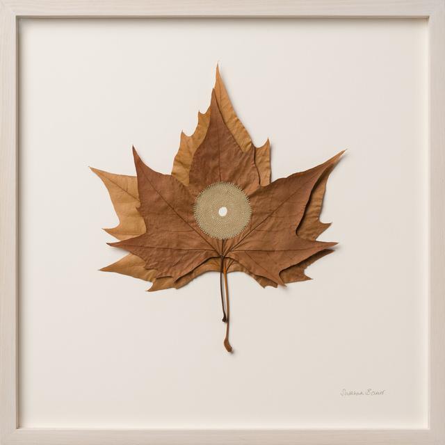 Susanna Bauer, 'Centered IX', 2019, Le Salon Vert