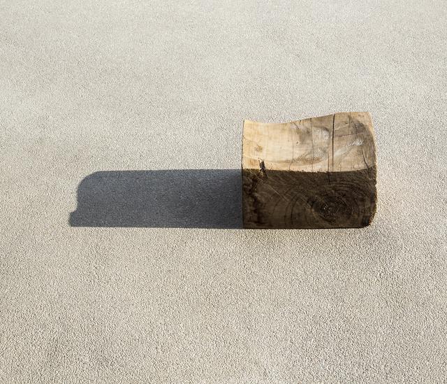 Ilán Rabchinskey, 'Wood #2', 2017, Patricia Conde Galería