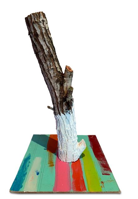 , 'Painted Tronco,' 2019, 81 Leonard Gallery