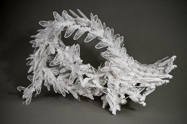 Shawn Smith, 'Swarm,' 2010, Turner Carroll Gallery
