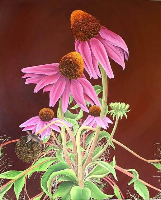 , 'Echinacea,' 2011, Susan Eley Fine Art