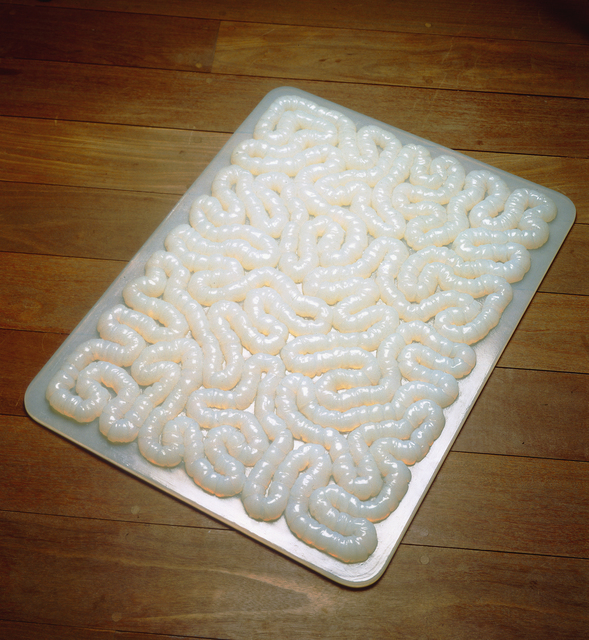 , 'Rubber Mat,' 1996, ICA Boston