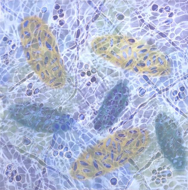 , 'Bio Patterns 7,' 2017, Fountain Street