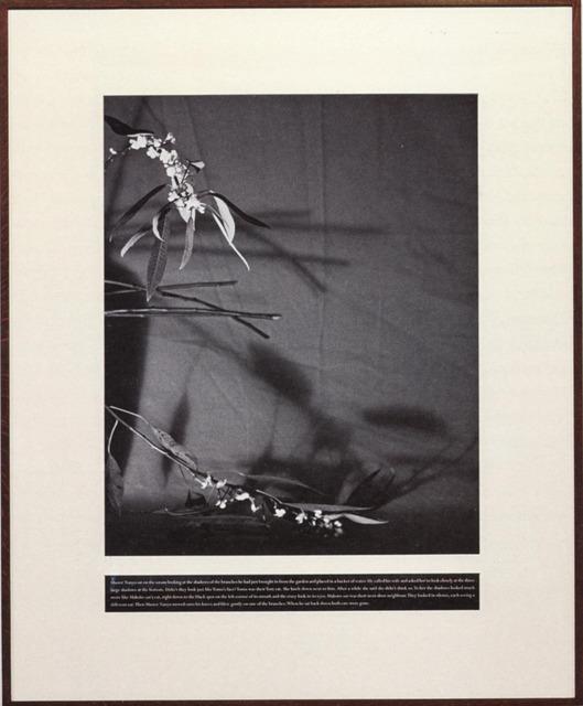 , 'Master Nanyo's two cats,' 2010, Galeria Filomena Soares
