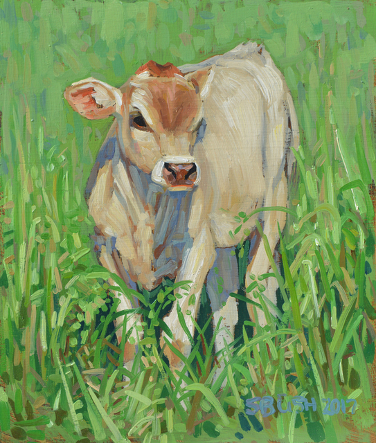 , 'Cow Study 25,' , West Branch Gallery