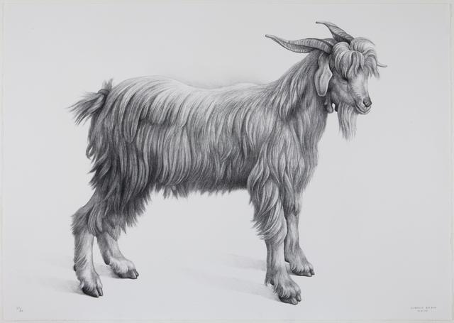 Claudio Bravo, 'Cabra', 2007, Print, Lithograph, Marlborough