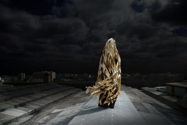 , 'La chevelure de  Bérénice,' 2013, Galerie Les filles du calvaire