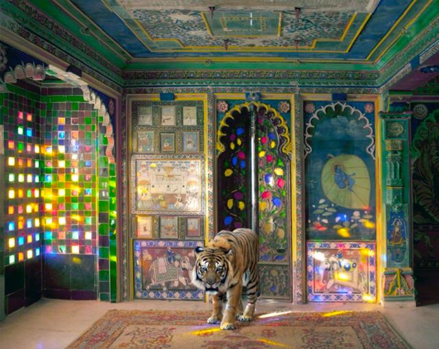 , 'Taking Refuge (India Songs),' 2015, Holden Luntz Gallery