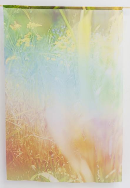 Jordan Sullivan, 'Echoes', 2017, Rubber Factory