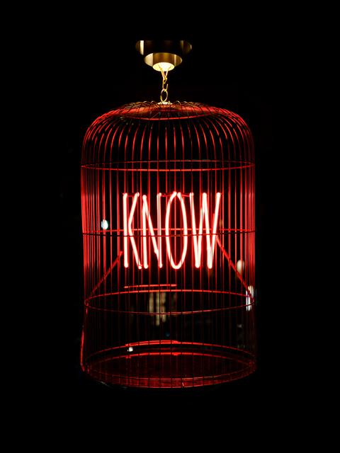 , 'Know ,' 2018, MAIA Contemporary