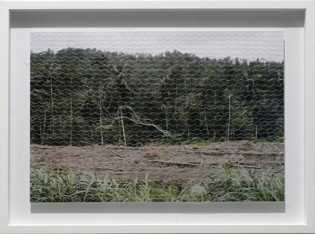 , 'Linetrap 13,' 2005, Carlos Carvalho- Arte Contemporanea