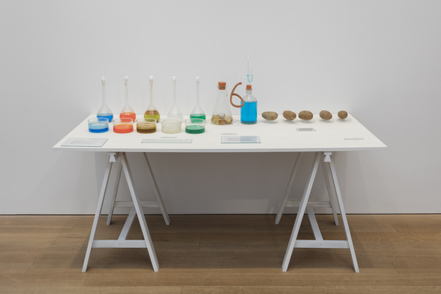 Victor Grippo, 'Todo en marcha (Índice del movimento general de los seres y las cosas)', 1973-1995, Sculpture, Glass bottles, dishes and flasks; salt solutions, potatoes and text on painted wooden table top and sawhorses, Alexander and Bonin