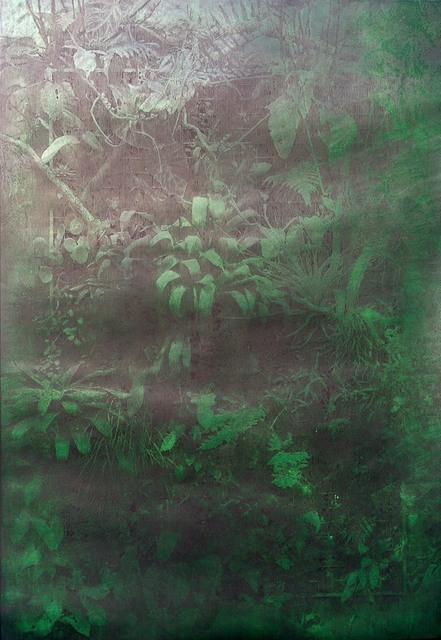 , 'Illuminated Nature,' 2014, Artify Gallery