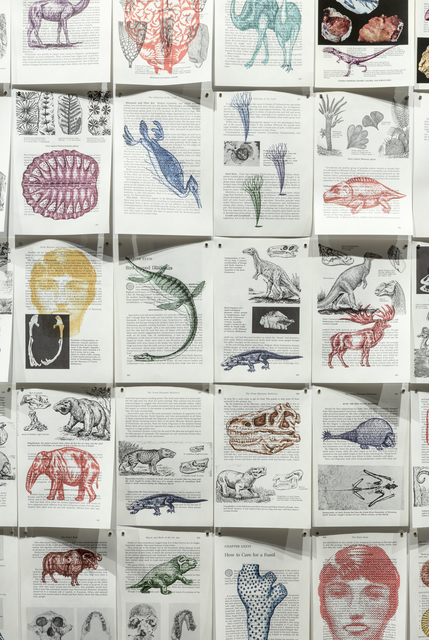 , 'The Fossil Book,' 2013, Corkin Gallery