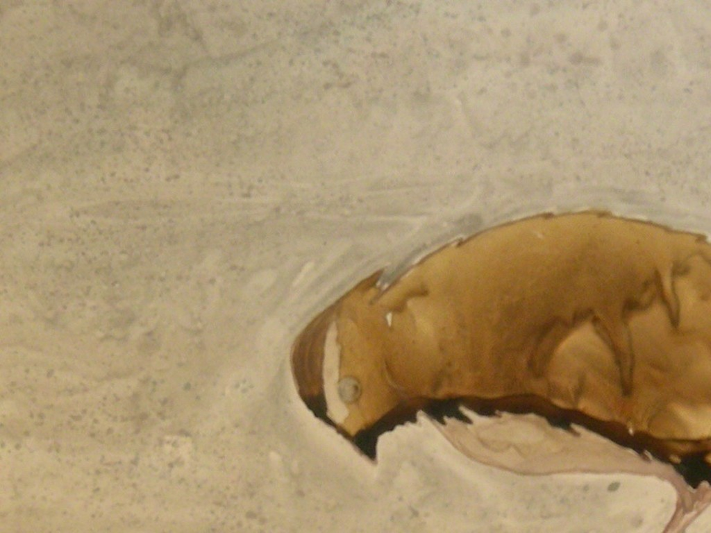 , 'Wet Field Sparrow,' 2009, Walter Wickiser Gallery