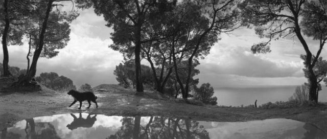 , 'Cilento , Italy,' 1999, Peter Fetterman Gallery