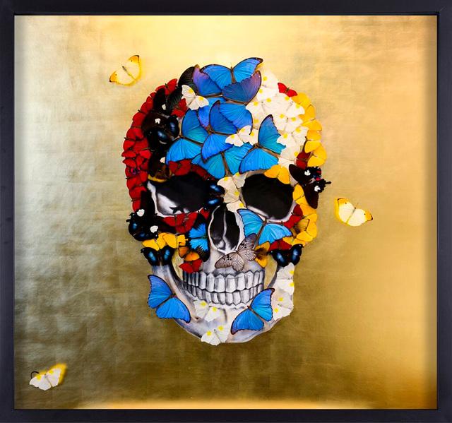 SN, 'GOLDEN SKULL', Eden Fine Art