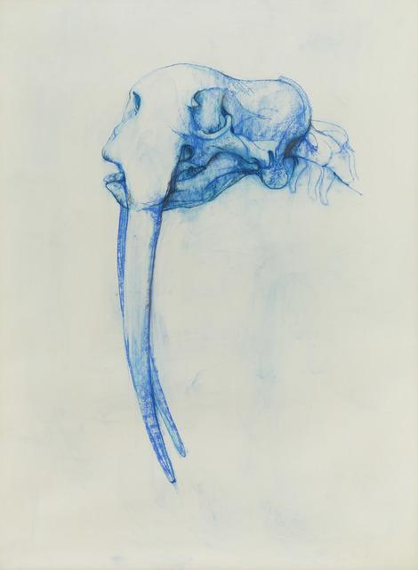Bryan Kneale, 'Walrus', 1987, Pangolin London