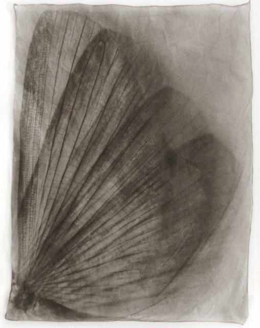 , 'Wing Wing No. 1,' 2014, Galerie Commeter / Persiehl & Heine