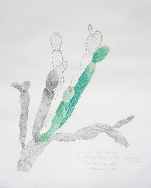 Paula Sengupta, 'The garden of unreason - The cactus drawing', 2018, Gallery Espace
