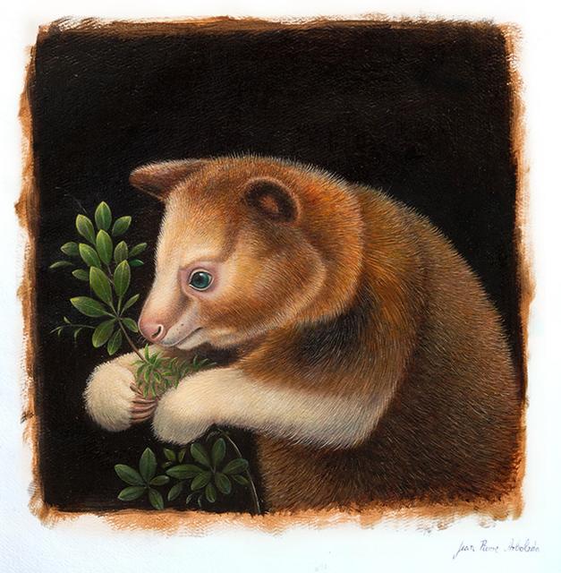 , 'Tree Kangaroo,' 2017, AFA Gallery