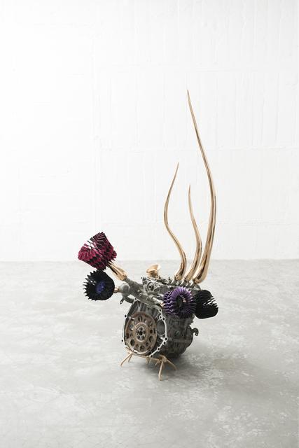 , 'Germination,' 2015, rosenfeld porcini