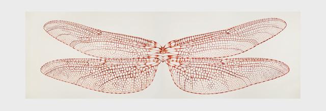 , 'Libélulis Locomia (Díptico),' 2015, Galeria Nara Roesler