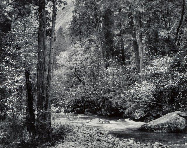 Ansel Adams, 'Tenaya Creek, Dogwood, Rain, Yosemite National Park, California', circa 1948, Heritage Auctions
