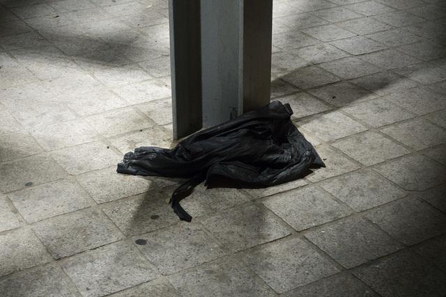 Catarina Botelho, 'Sin título #3 · Proyecto Tercer Paisaje ', 2018, Galería silvestre