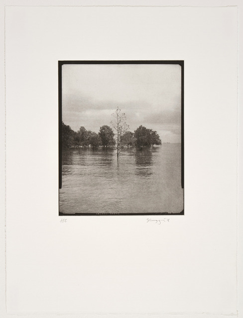 Simryn Gill, 'Channel', 2014, Planthouse