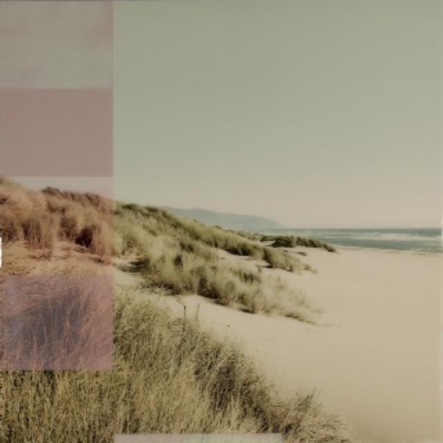 , 'Oregon Dunes,' 2016, K + Y Gallery