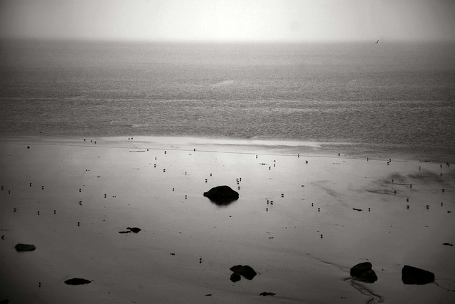 Manuel Vilariño, 'BLACK BEACH', 2008, Photography, Photography on Hahnemuhle paper, PUXAGALLERY