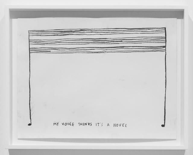 , 'My Voice Thinks It's a Novel,' 2015, Carroll / Fletcher