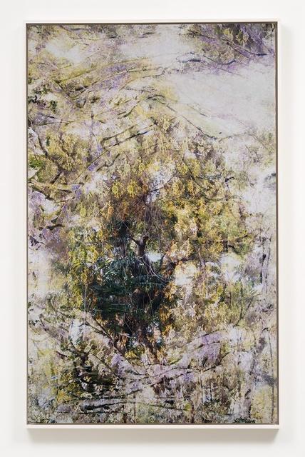 Matthew Brandt, 'Wai'anae 603622', 2016, M+B