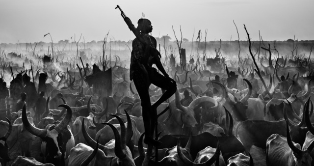 David Yarrow, 'The Proud Nightwatchman', Art Angels