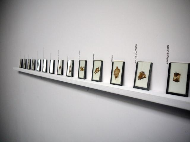 , 'Transmutations d'un même,' 2015, Galerie De Roussan