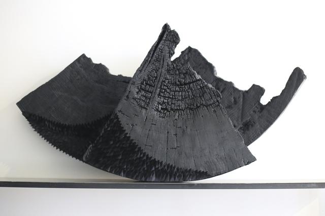 , 'Écailles,' 2019, Galerie Calderone
