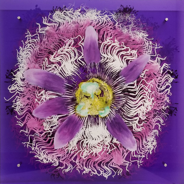 , 'Passionflower,' ca. 2018, Parlor Gallery