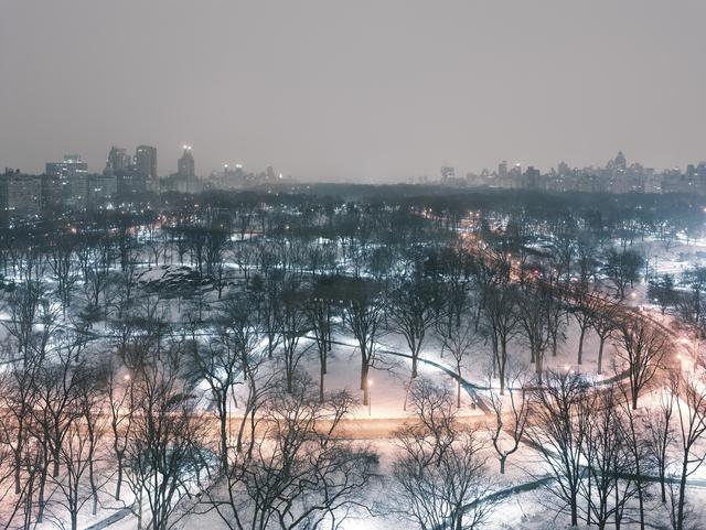 , 'Central Park (Winter Night), Manhattan, New York,' 2014, Galerie Nikolaus Ruzicska