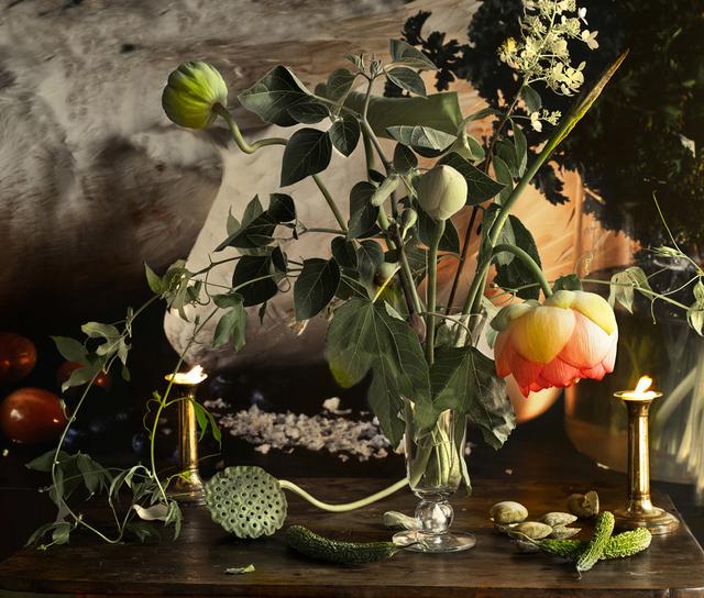 Vera Mercer, 'Lotus', 2012, Galerie Jordanow