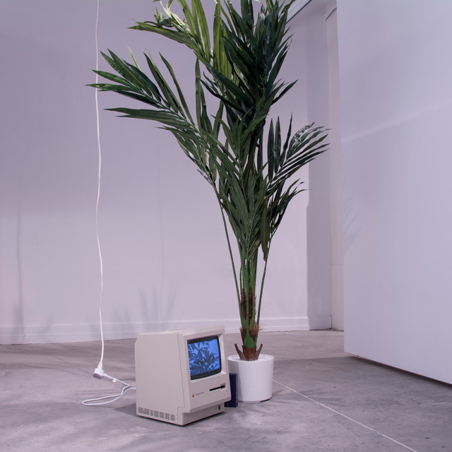 , 'And Other Things You Can Buy On The Internet,' 2016, Gallery Madison Park