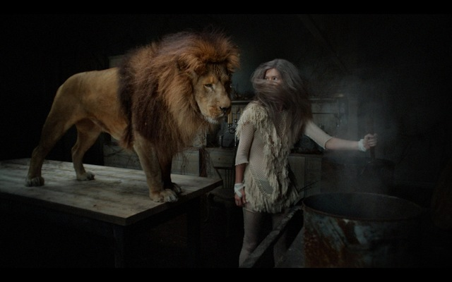 , 'the Hunting Project:Lion001   ,' 2016, Phylogeny Contemporary