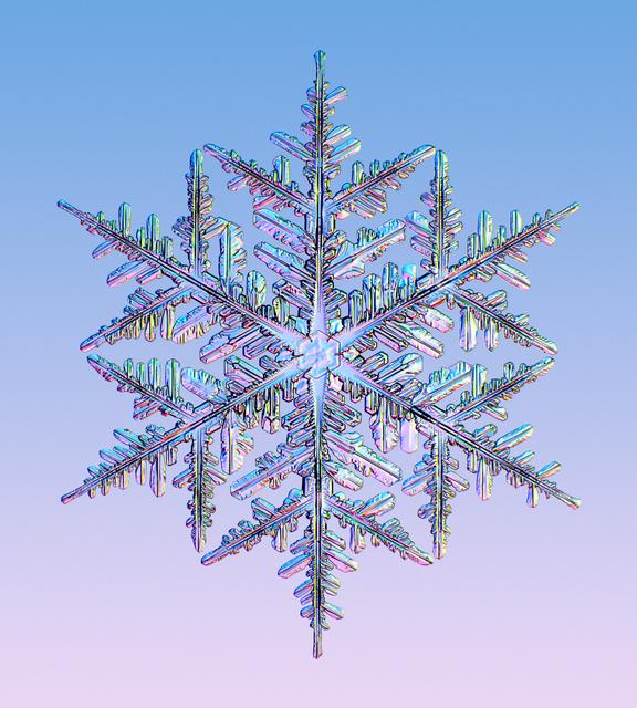 , 'Snowflake #2,' 2016, Richard Levy Gallery