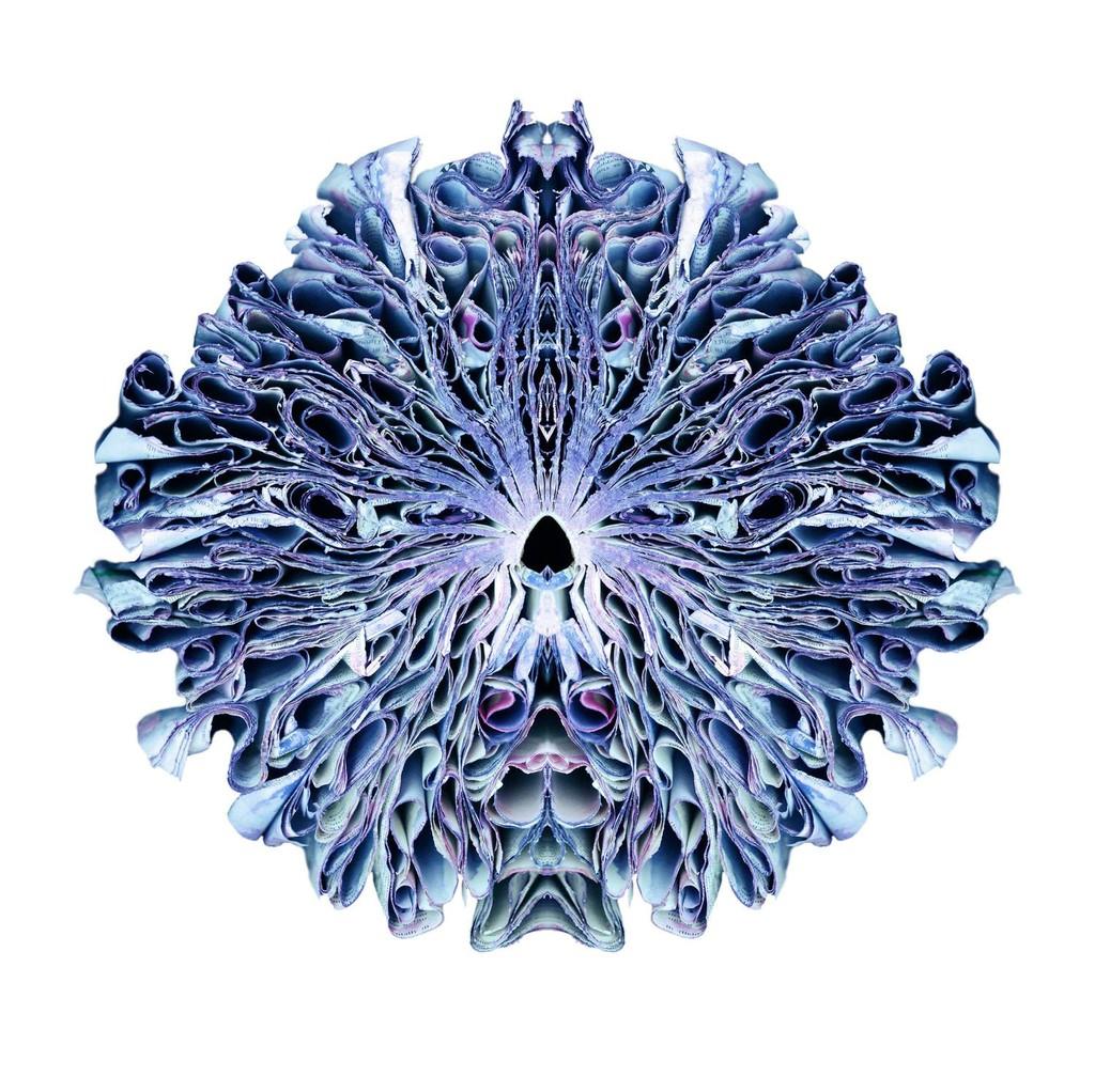 https   www.artsy.net artwork ryan-schmidt-breach https ... fd11f2ac9