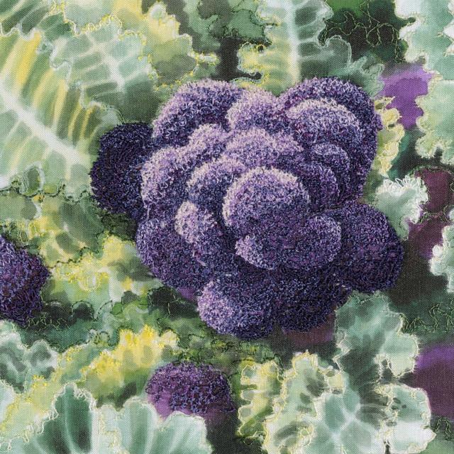 , 'Purple Sprouting,' 2019, Daniel Raphael