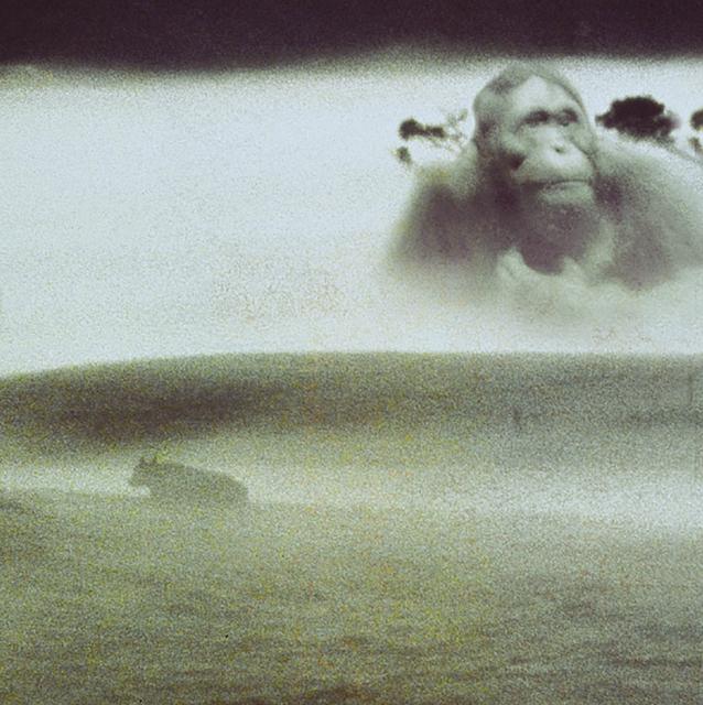 Lisa Roet, 'Napoleon 3', 2001, MARS
