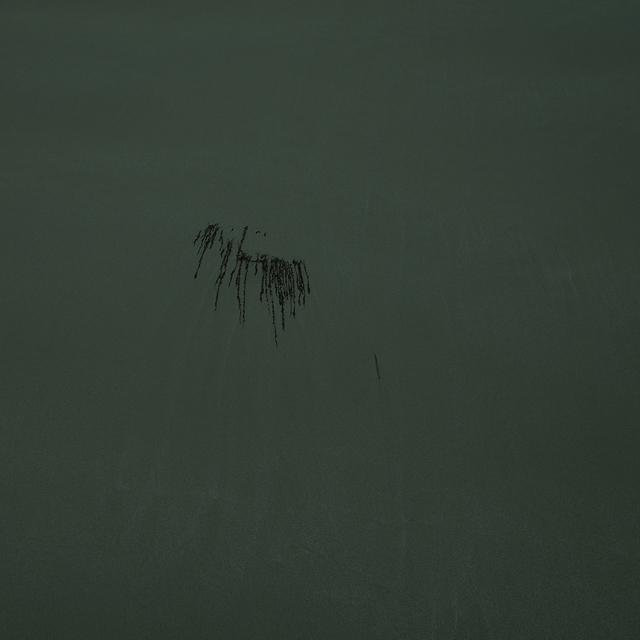 , 'Tidal Haiku,' 2016, Carrie Secrist Gallery