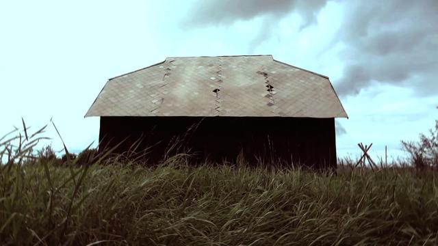 , 'Radar,' 2011, Alma