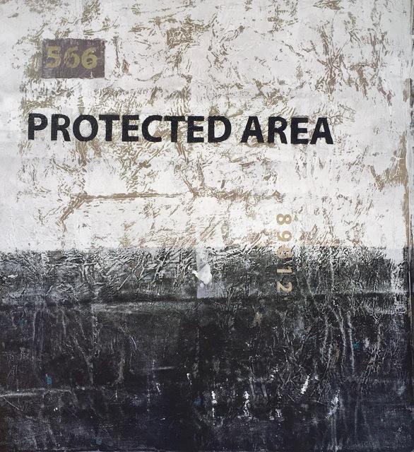 , '566 (Protected Area),' 2016, ARTLabAfrica