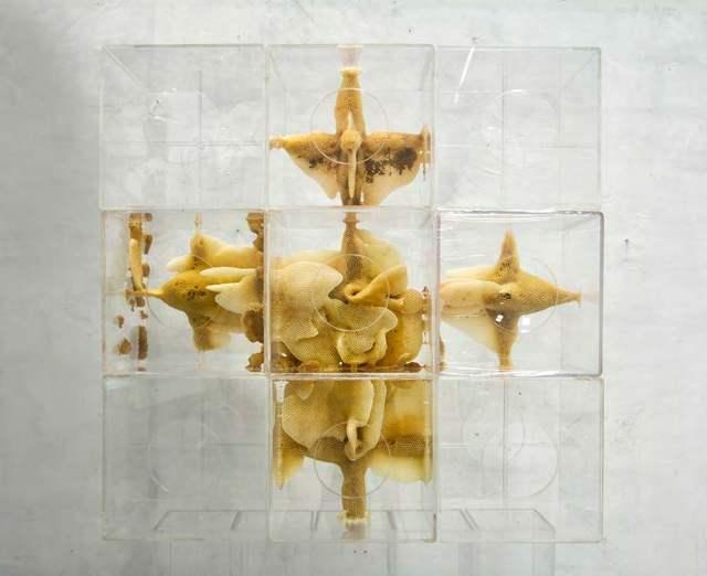 , 'Yuansu Series II, #6-58, #6-71, #6-74, #6-81, #6-83,' 2014-2015, Pearl Lam Galleries